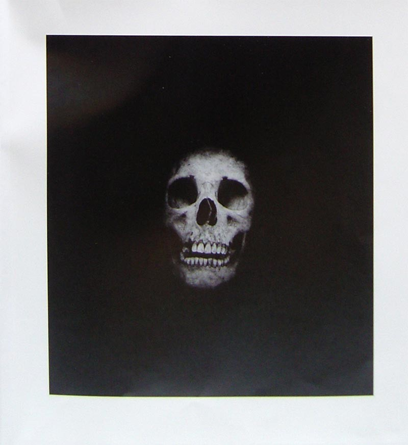 Damien Hirst | I Once Was What You Are, You Will Be What I Am | Skull 6 | 2014 | Image of Artists' work.