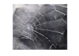 Vija Celmins | Spider Web | 2009